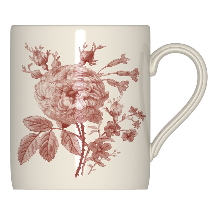 Royal Stafford Floral Weave Mug Red 6 Pack                   Music Gift