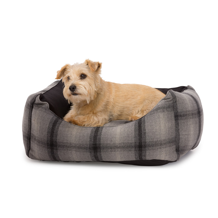 House Of Paws Tweed & Water Resistant Rectangle S            Gift